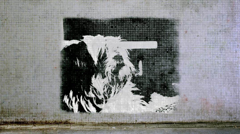Sasi as a stencil