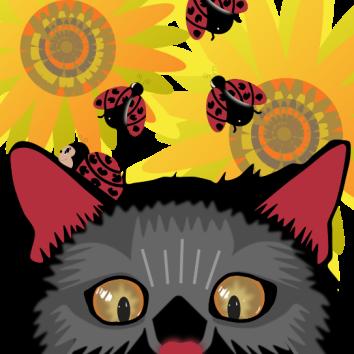 Too Many Ladybugs - Black Cat