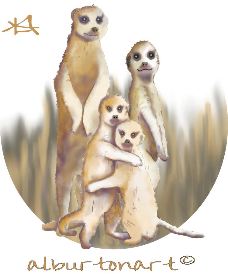 Meerkats ad.jpg