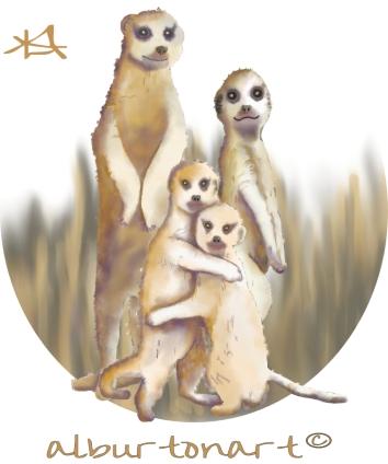 Meerkats ad